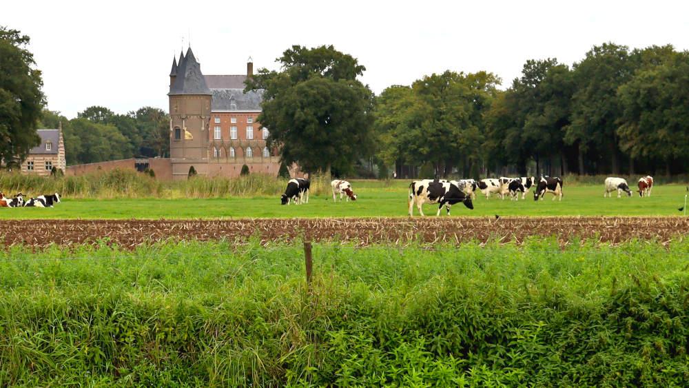 Kasteel Heeswijk zie je in het begin van de wandelroute al op een afstandje liggen.