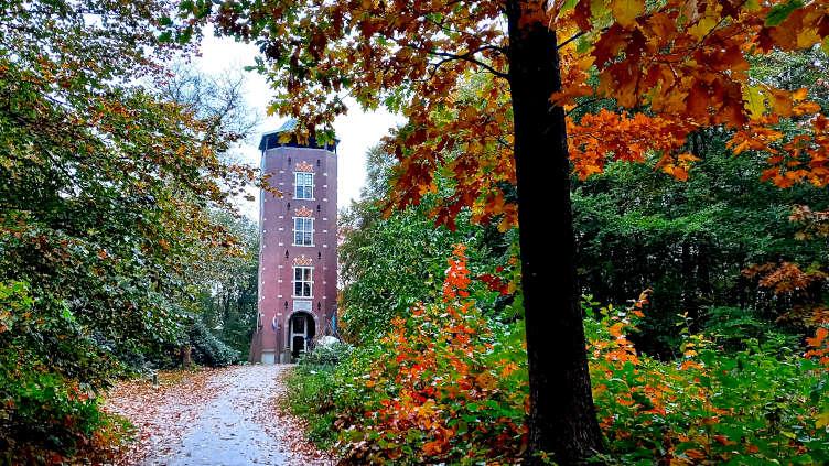 Uitkijktoren de Koepel in het Luntersche Buurtbosch in Lunteren