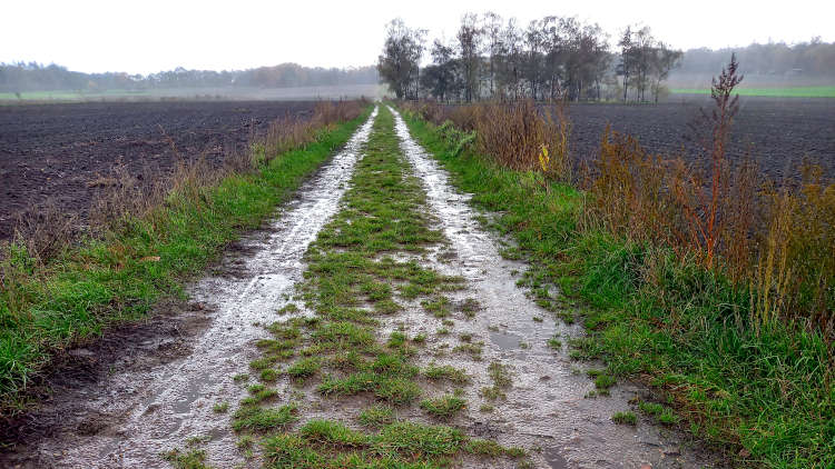 Klompenpad tijdens een regenbui wordt lekker modderig.