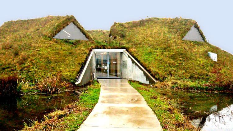 het gebouw van het Biesbosch Museum heeft een dak begroeid met gras en kruiden.