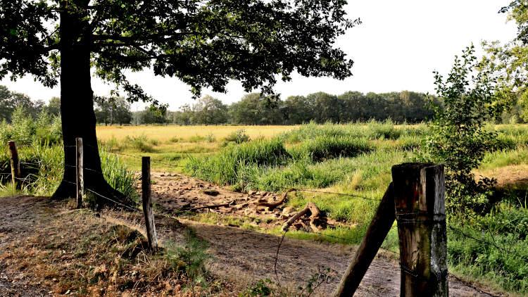Trage Tochten in Brabant: doorkijkje in De Mortel