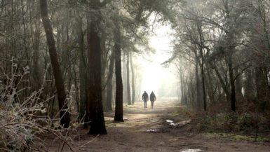 Wandelaars in Bomenpark Heesch in De Maashors