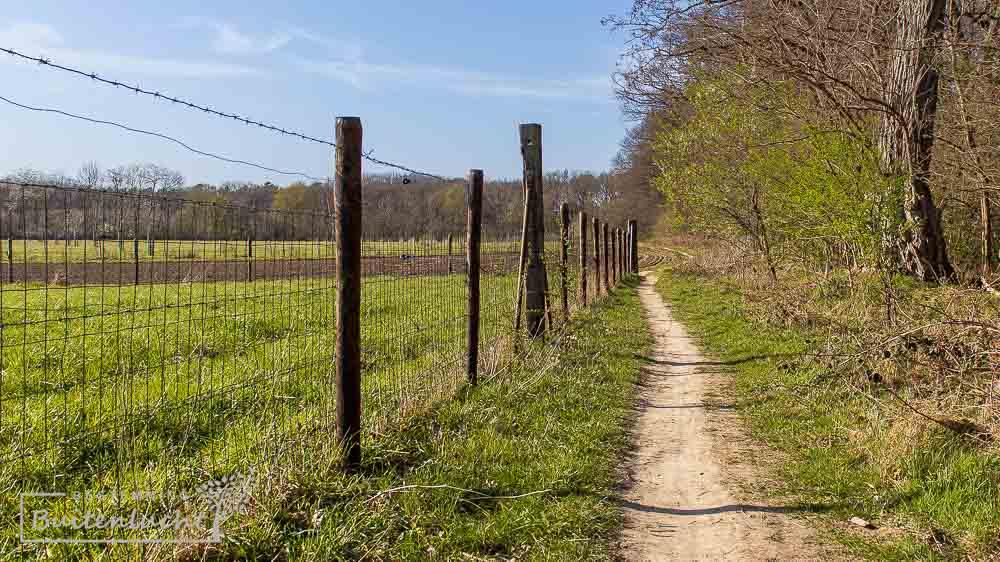 langs een Limburgs hek met weide en daarachter een akkerland