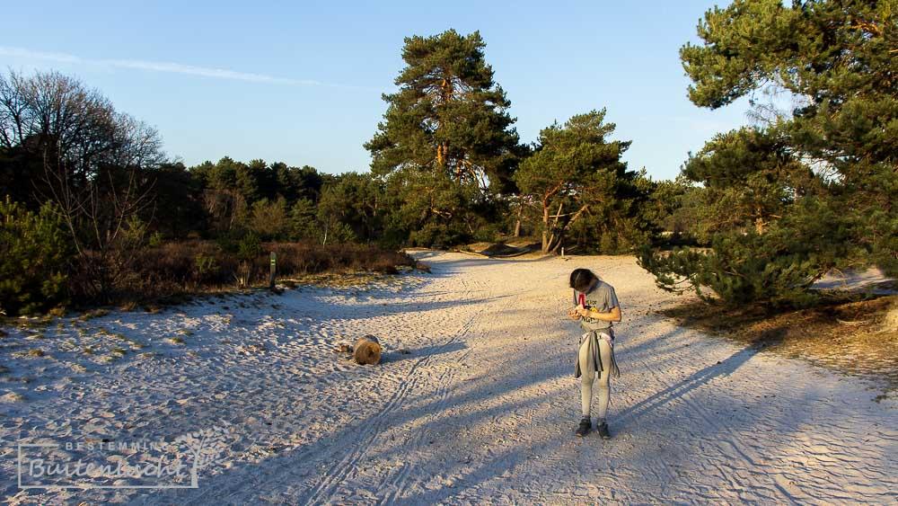 brede zandpaden bij de trage tocht Brunsummerheide