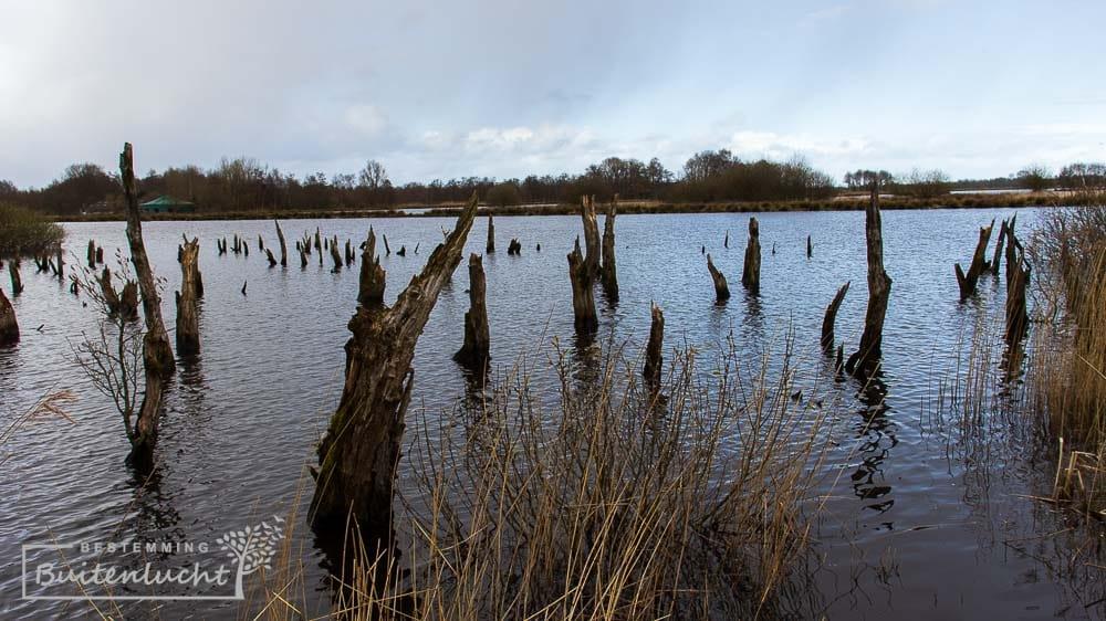 hoog water tijdens de wandelroute door de ALde Feanen