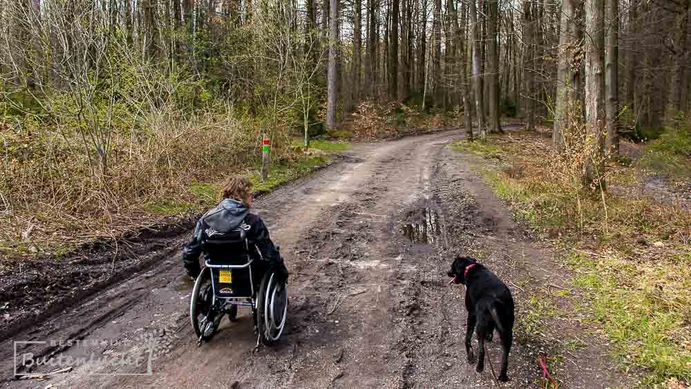 rolstoelpad in Vijlenerbos is moeilijker begaanbaar op regenachtige dagen