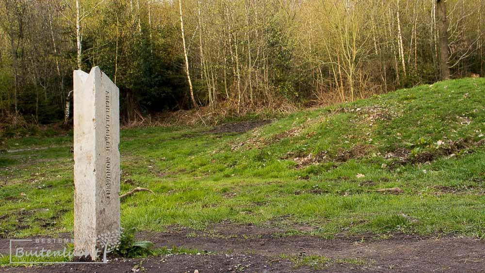grafheuvel in Vijlenerbos