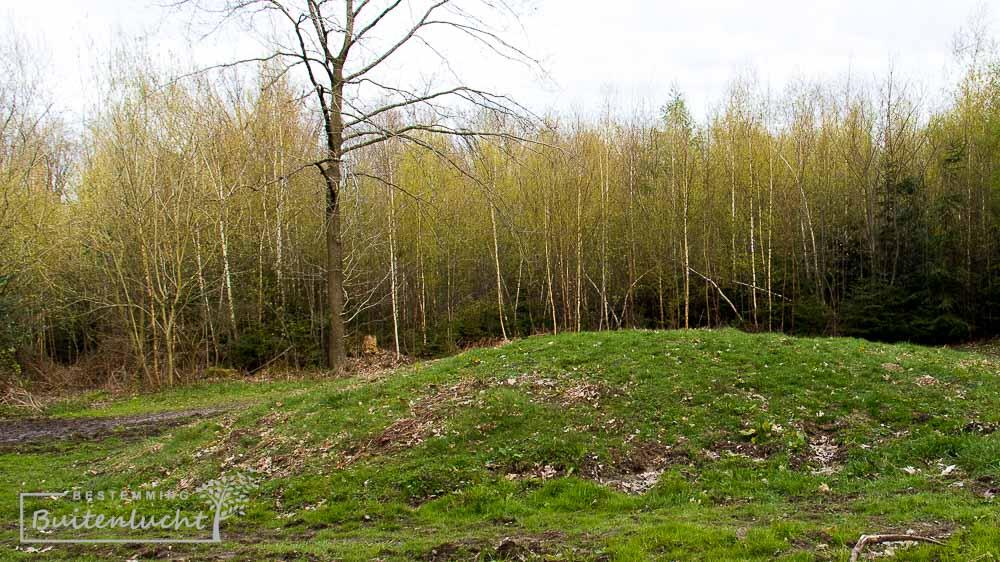 grafheuvel langs het rolstoelpad in Limburg