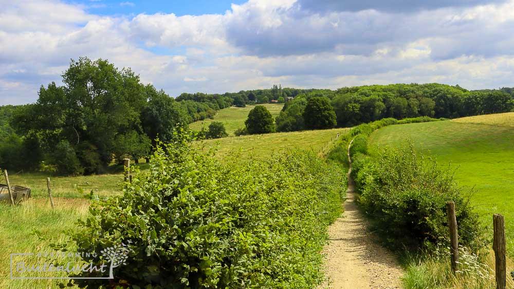 Wandelen in het Limburgse heuvelland
