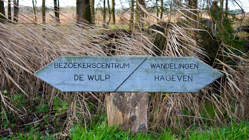 plateaux-het hageven op de grens van België en Nederland