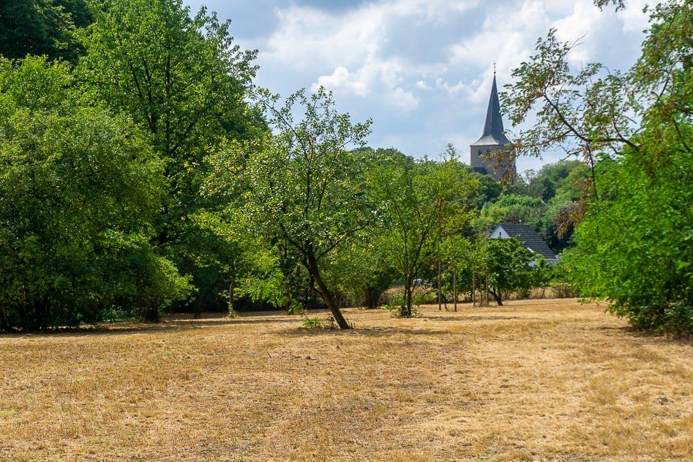 Het Pieterpad in Duitsland: wandelen over de grens