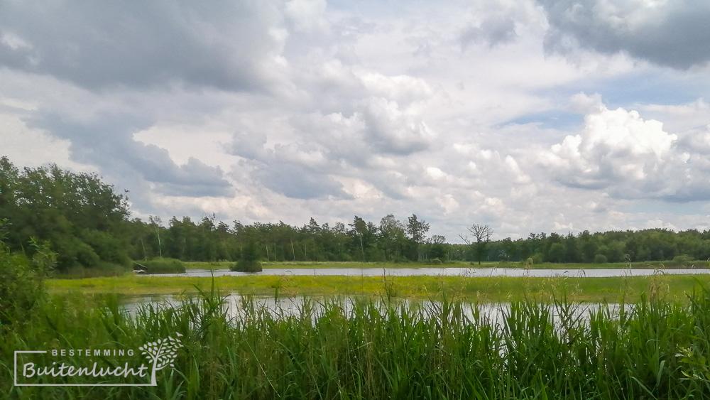 Het Groot Ven in Weerterbos tijdens het Graaf van Hornepad