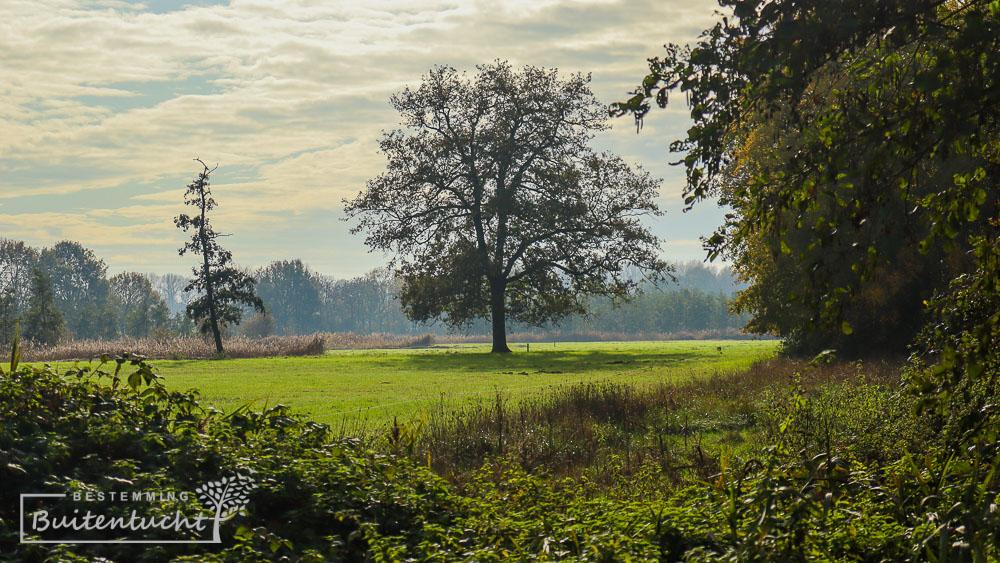 De vallei van de Tingelroyse Beek bij Swartbroek tijdens het Graaf van Hornepad.