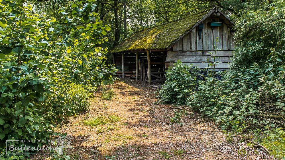 Strijbosch, natuurgebied bij Handel in Oost-Brabant