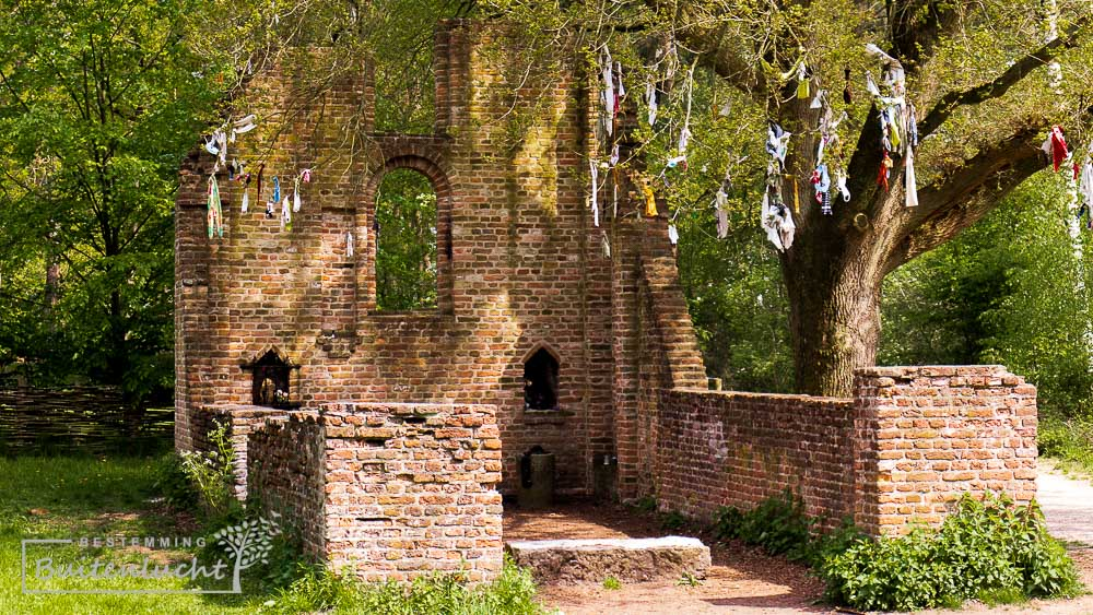 De Sint-Walrickkapel en de koortsboom