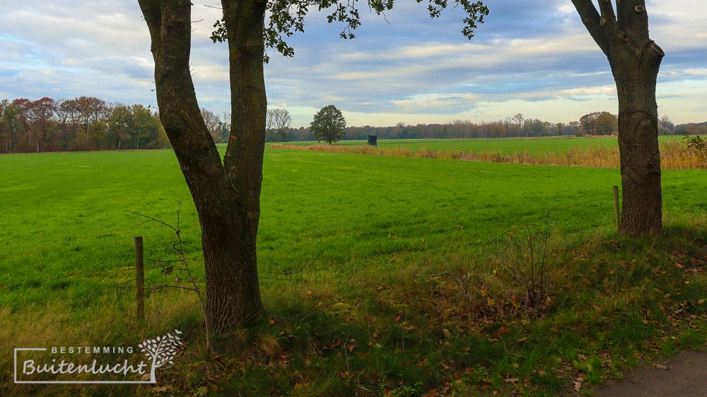 Doorkijkje over de weilanden in de Krang bij Swartbroek